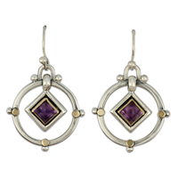 Petey Earrings in Amethyst